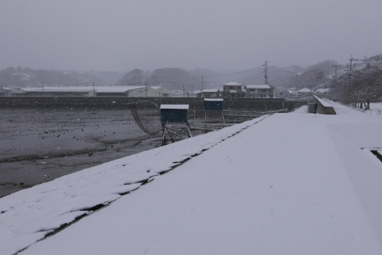 s-16年1月24日 (4)