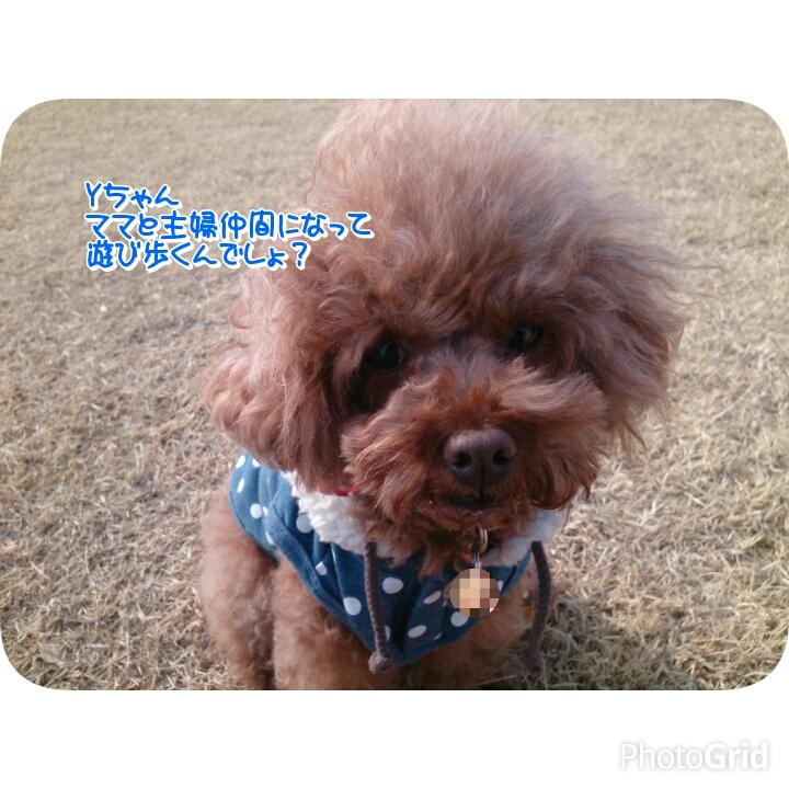 20160306205000a53.jpg