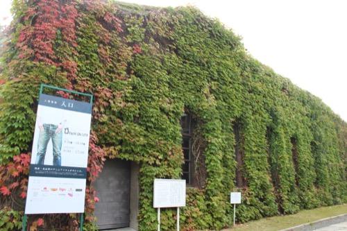 0062:倉敷アイビースクエア レンガ外壁を覆う蔦