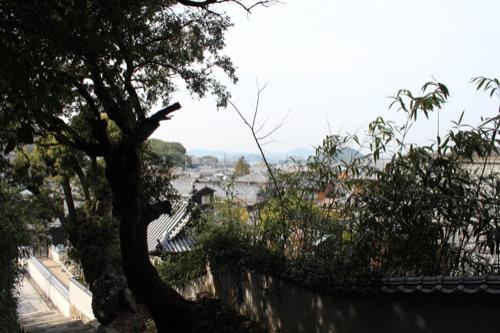 0071:家プロジェクト「南寺」 八幡山から本村地区をみる