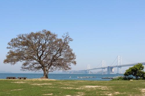 0073:香川県立東山魁夷せとうち美術館 ナカンダ浜から瀬戸大橋を眺める