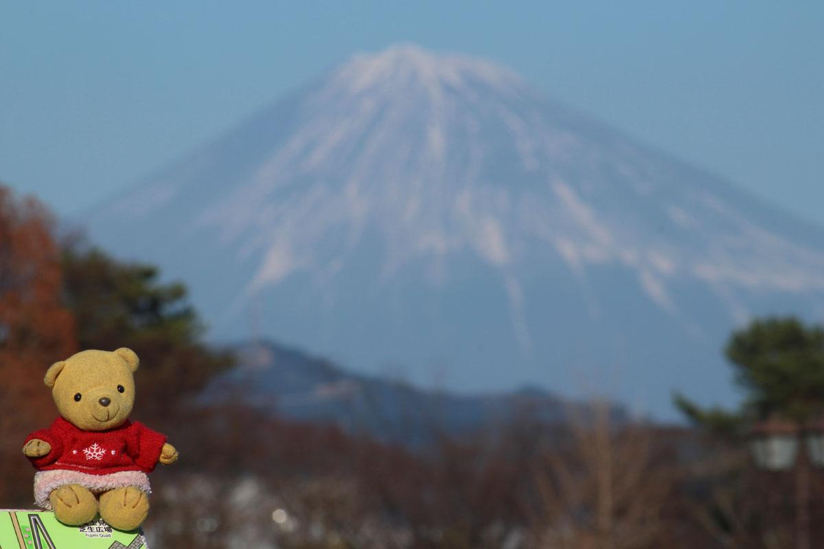 富士見芝生広場からの富士山と 160102