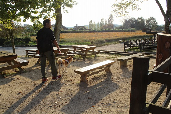 s-dogrunIMG_9596