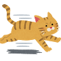 ネコ(走る猫