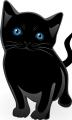 ネコ・黒猫3