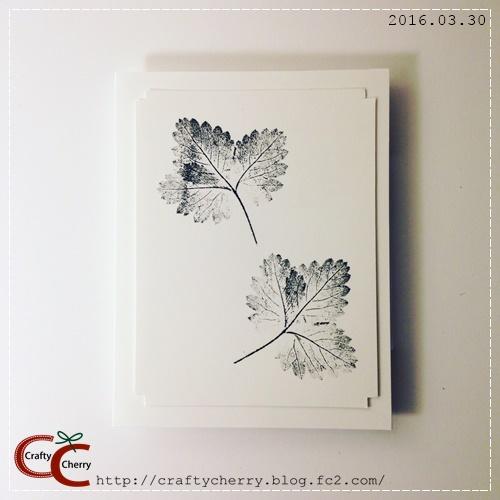 20160330_leaves.jpg