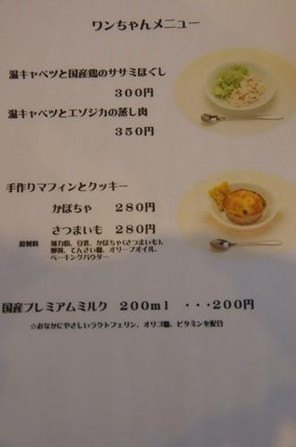 K52G2114_Y.jpg