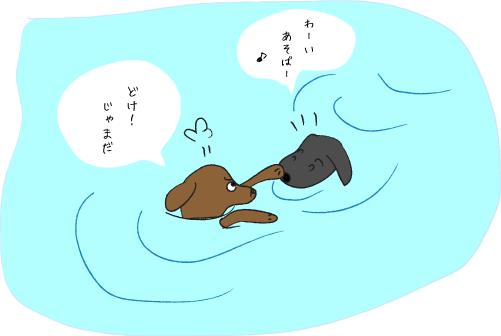 救助に向かう犬