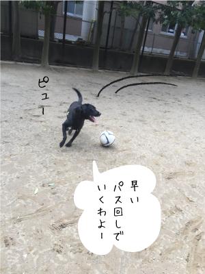サッカーをする犬02