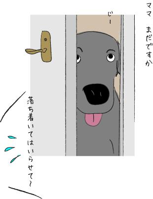 トイレをのぞく犬