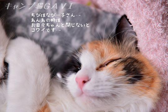 160223_1822.jpg