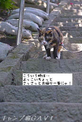 160228_1947.jpg