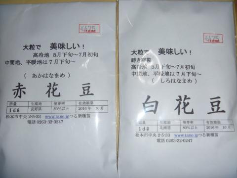 P1070564_縮小
