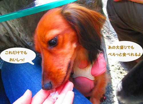 2015-11-titibu46.jpg