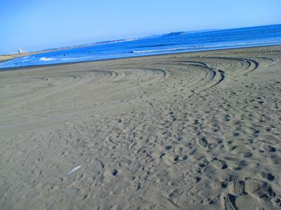 2016-1-beach52.jpg