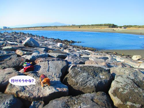 2016-1-beach57.jpg