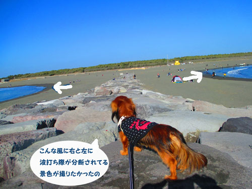 2016-1-beach9.jpg