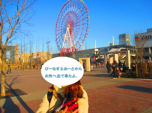 2016-2-daiba93.jpg