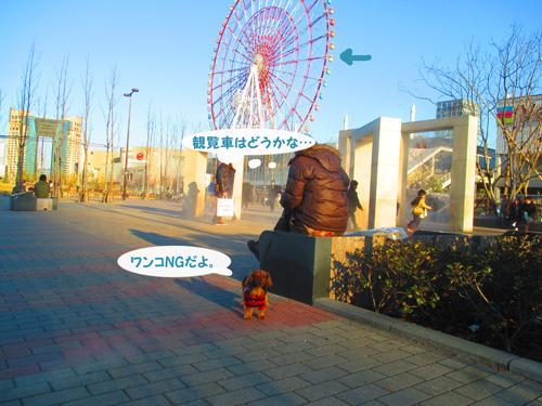 2016-2-daiba94.jpg