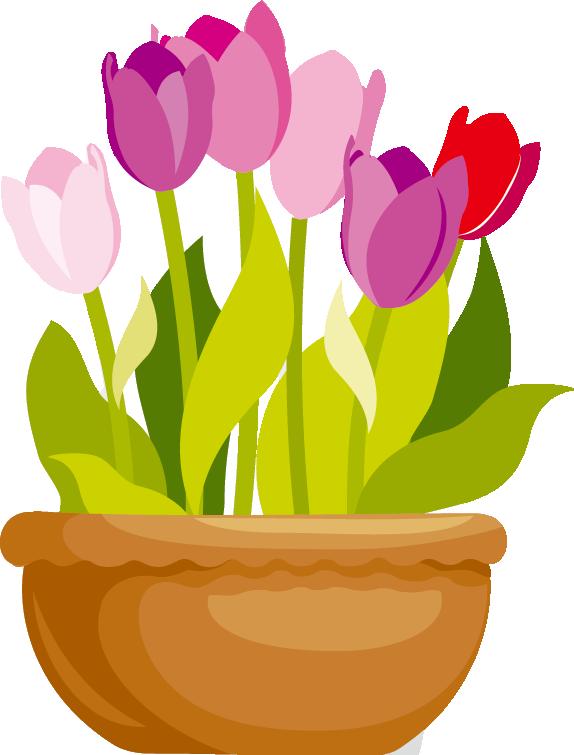 tulip006.png
