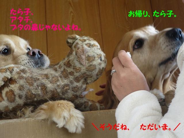 IMG_7281.jpg