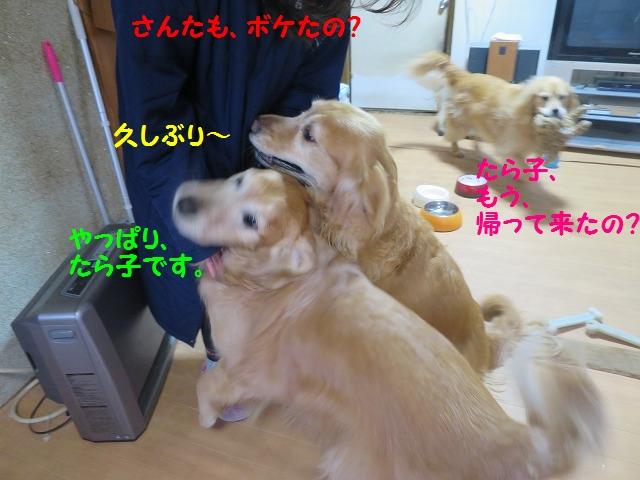 IMG_7571.jpg