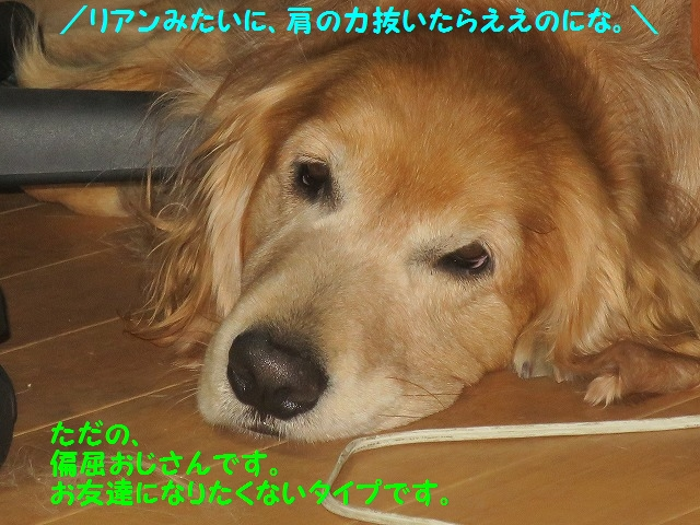 IMG_7873.jpg