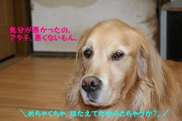 IMG_8471.jpg
