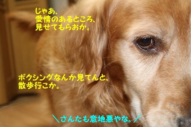 IMG_9183a.jpg