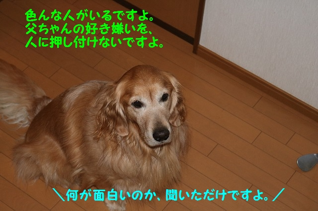 IMG_9433.jpg