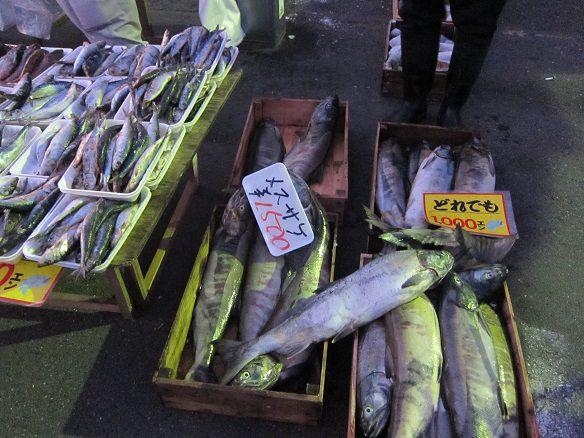 八戸朝市 メス鮭2015年12月