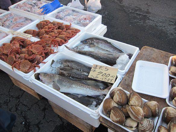 刺身用 真鱈