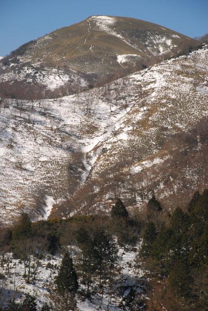 竜ヶ岳_雪の笹原に山頂へと続く道