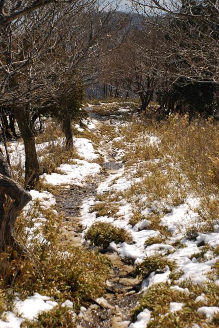 竜ヶ岳_遠足尾根_残雪の登山道_雪融け水が流れる