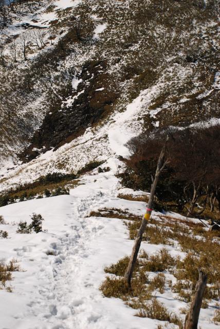 竜ヶ岳_残雪の尾根の下部_吹き溜まりの雪