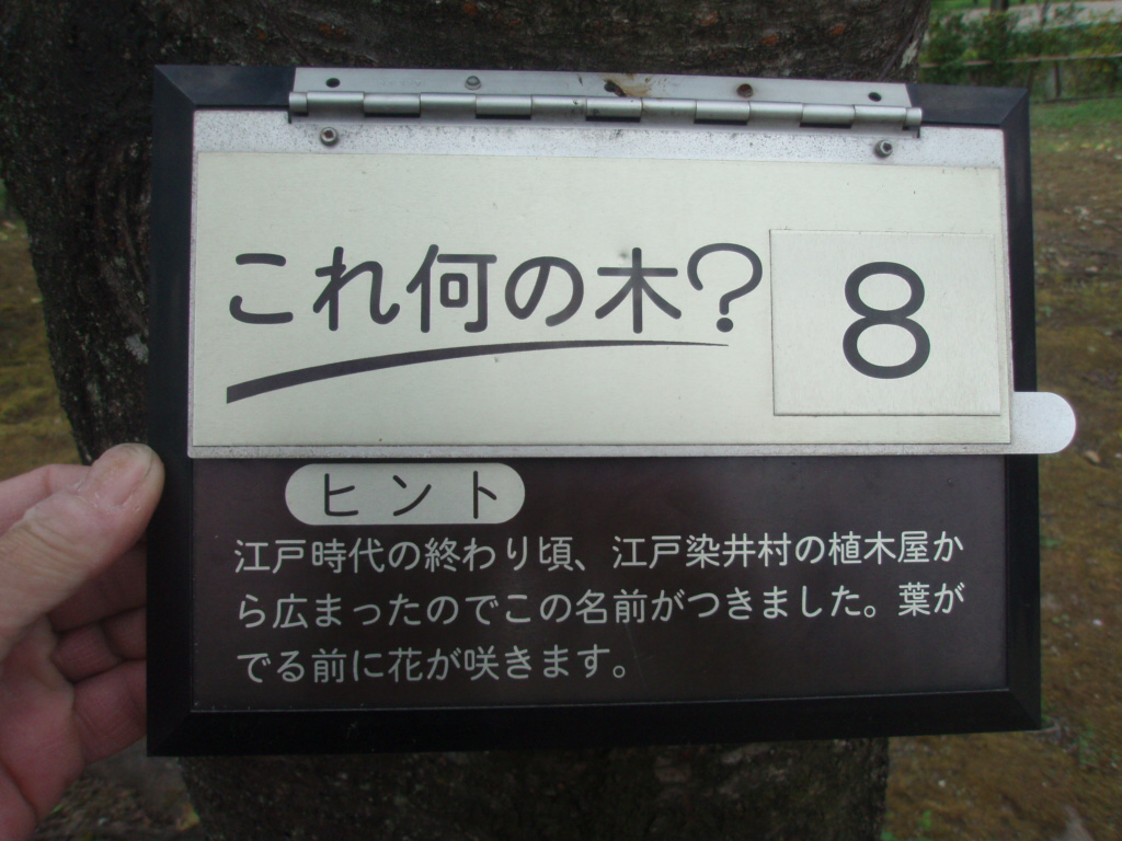 P4020199.jpg
