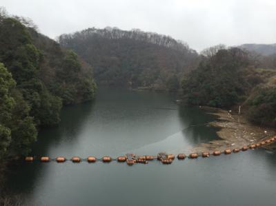 photo_160319_008.jpg