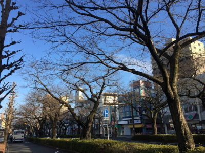 photo_160319_045.jpg
