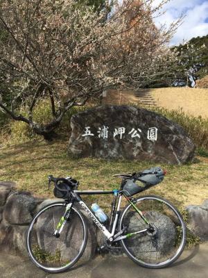 photo_160321_033.jpg