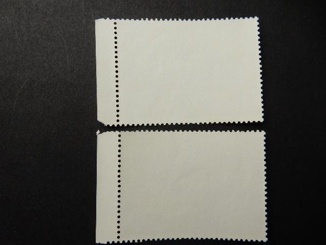 DSCN8800.jpg
