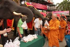 elephant day (1)