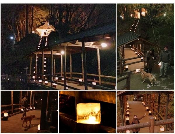 鹿教湯温泉氷灯籠