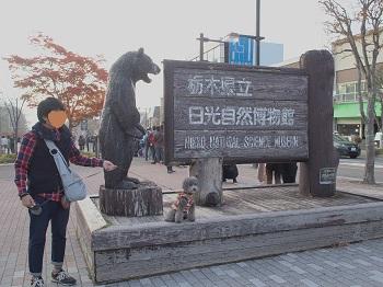 日光20151024-8