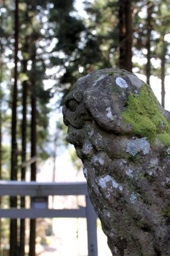 虫野神社の狛わんこ