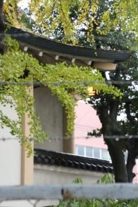 諏訪神社(城東区諏訪)25