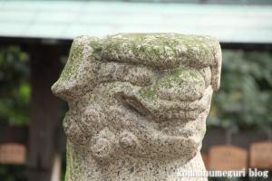 忠岡神社(泉北郡忠岡町忠岡中)56