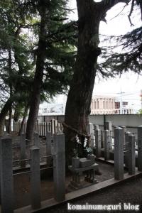 忠岡神社(泉北郡忠岡町忠岡中)24