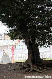 忠岡神社(泉北郡忠岡町忠岡中)58