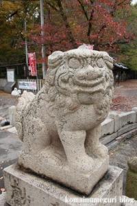 泉穴師神社(泉大津市豊中町)9