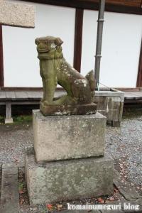 泉穴師神社(泉大津市豊中町)40